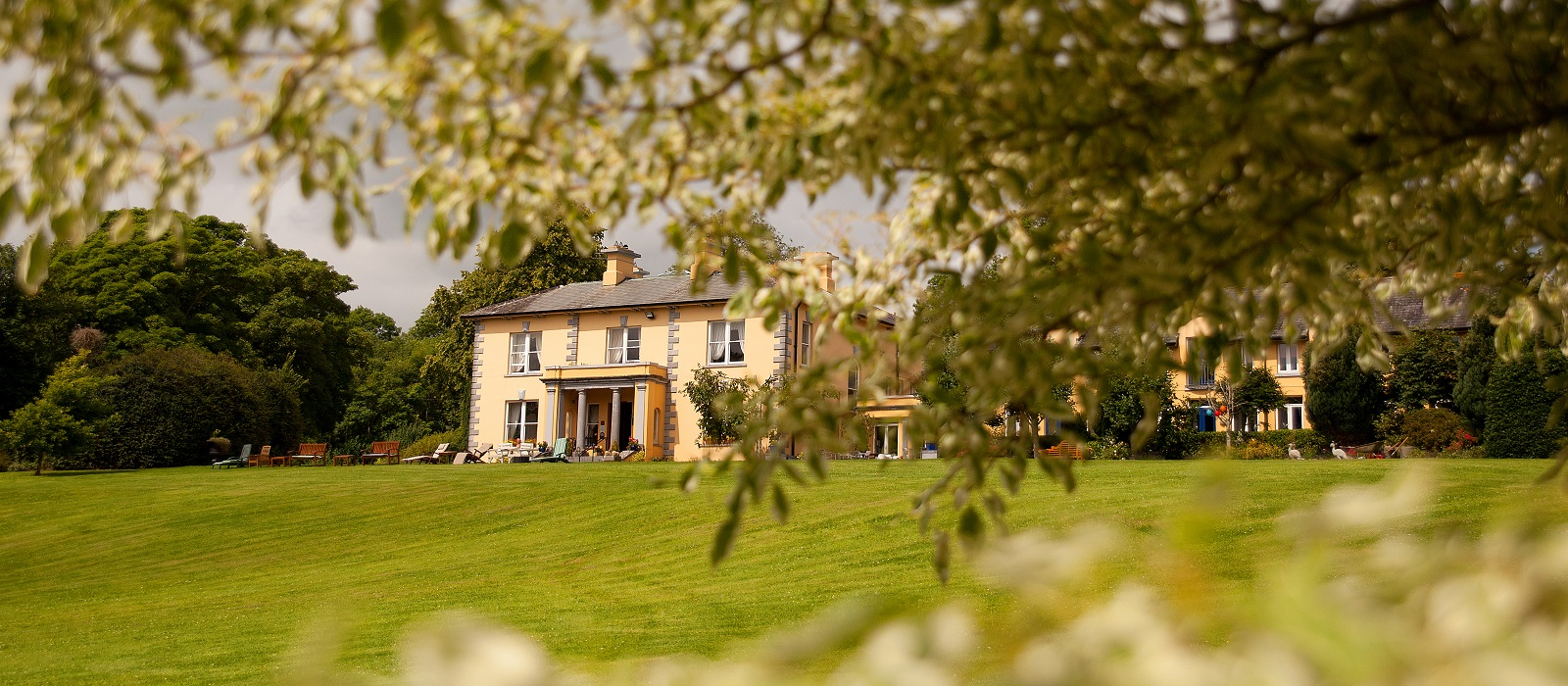 The Mustard Seed at Echo Lodge | Ballingarry |Limerick | Hilary Finlay